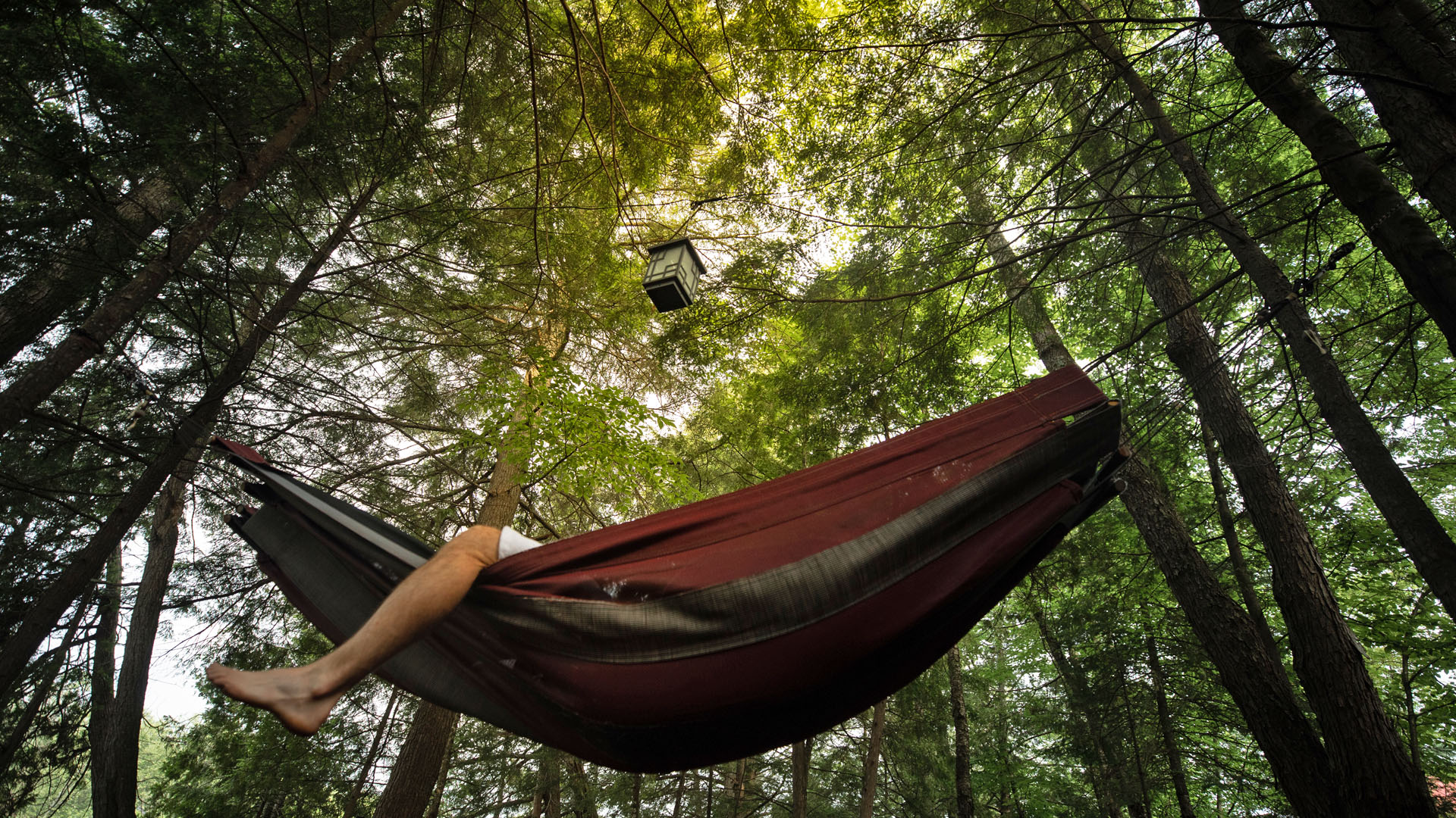 A man sunbathing in a hammock in the forest near Scandinave Spa Tremblant.